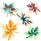 Collection of colorful autumn leaves for design - 235108304