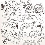 Set of vector calligraphic flourishes for design - 235111592