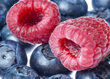 Aerial red raspberries and dark blue blueberries on a light substrate. White background.