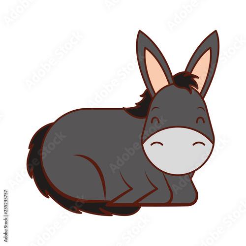 donkey cartoon animal wild life