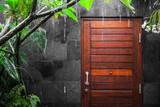 View at door through tropical rain
