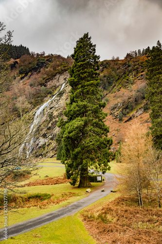Powerscourt Waterfall in the forest - 235277596