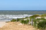 Dune at the Dutch North Sea. Wadden sea, Friesland, Texel.