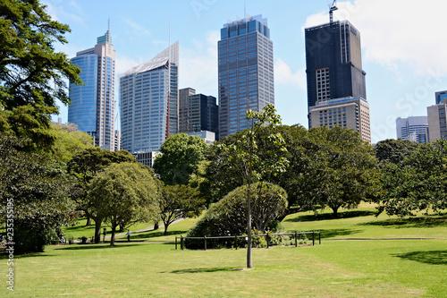 fototapeta na ścianę View on business centre from city park in Sydney