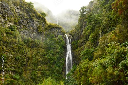 Risco waterfall - madeira island - 235356954
