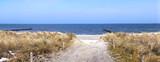 Dünen Weg an der Ostsee