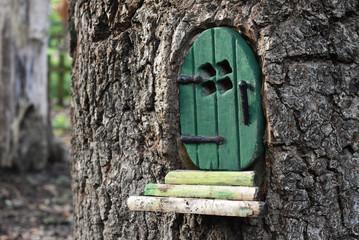 Little green door in a tree trunk for pixies / fairies