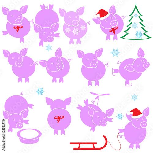 Set of cartoon pigs