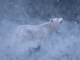 3D rendering of a majestic white wolf in snow.