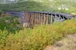 Old Railroad bridge of White Pass and Yukon Route near Skagway, Alaska