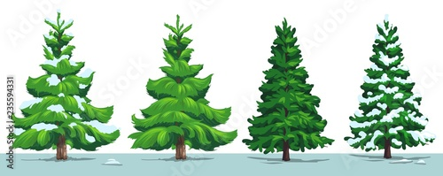 Christmas tree, green fir, pine, spruce with snow - 235594331