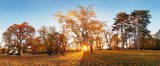 Beautiful park garden in atumn. Fall panorama in park at sunrise in Slovakia - 235632337