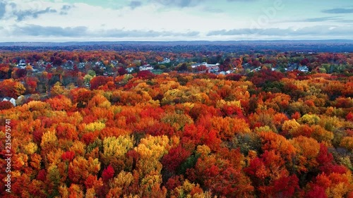 Aerial view of residential area in Autumn with colorful foliage