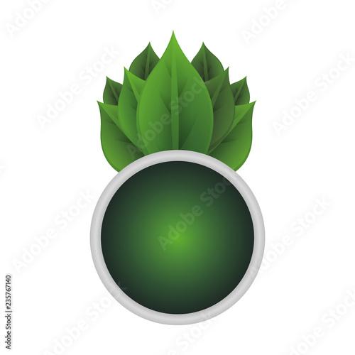 przycisk ekologia z liści