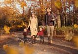 Joyful family enjoying great, autumnal weather - 235786773