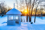 Sunset in frozen winter park - 235822796