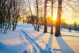 Colorful sunset over ski track in winter park - 235823146