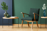 Wooden armchair between tables with leaves in green and blue living room interior. Real photo - 235847592