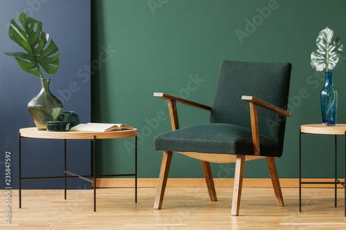 Wooden armchair between tables with leaves in green and blue living room interior. Real photo
