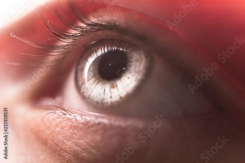 Macro image of human eye - 235858531
