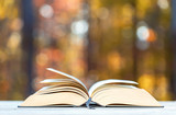 Big hardcover book on a fall forest background