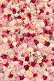 Many various pink, red and white flowers abstract pattern backgrounds