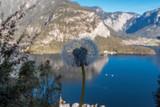 Bela vista do lago na cidade de Hallstatt na Áustria com uma flor em primeiro plano © Adriano