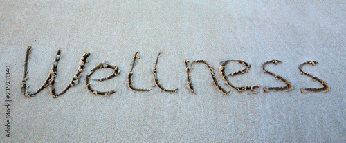 Word Wellness written on the sand near the sea. - 235931340