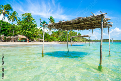 Rustic wooden palapas stand in the shallows of a palm-lined beach on the shore of a remote island in Bahia, Brazil - 235976741