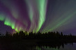 Northern LIghts shooting over trees by pond