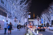 Winter illumination at Roppongi Keyakizaka Street in Tokyo 六本木けやき坂イルミネーション
