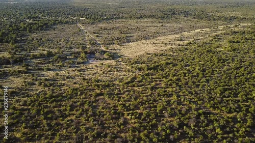 Tilt up aerial shot, revealing hills in the middle of the savannah in Africa