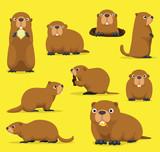 Groundhog Chuck Woodchuck Groundpig Whistlepig Cute Cartoon Vector Illustration - 236117954