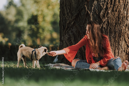 Full height photo of happy woman is sitting near tree and giving to her pug toy bone