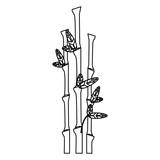 Bamboo asian plant black and white © Jemastock