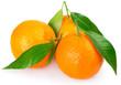 Quadro Fresh mandarine with leaf on white background