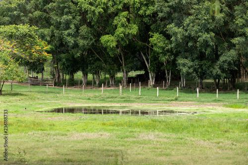 lago na fazenda