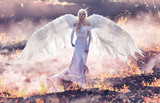 Conceptual portrait of an angel walking on hell flames - 236195940
