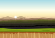 A lowland landscape background