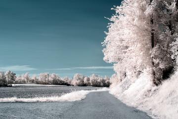 Chemin en campagne © Zian