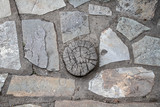 A round saw cut down of a tree between the laying of stones of various shapes