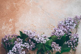Lilac branches on the background - 236258164