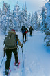 Snowshoeing through the Valley of Phantoms in Monts Valin NP, Saguenay-Lac-Saint-Jean, Quebec, Canada