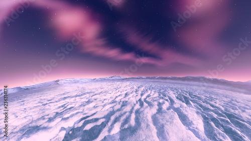 北極 - 236314174