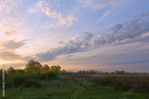 Misty morning over the meadow in the spring