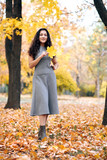 Beautiful woman with yellow leaves posing in autumn city park. - 236356197