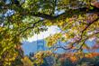 View of St Johns Bridge through the foliage of autumn trees