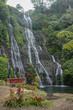 waterfall - 236421918