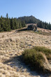 View to the top of die kleiner Osser in the bavarian forest in germany. - 236445182