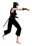 3D Rendering Female Ninja on White - 236464561